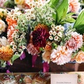 sasha-stories-134407-unsplash